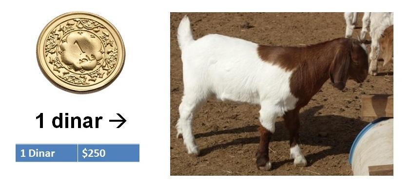 1 Dinar kambing